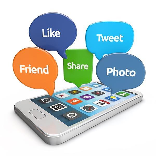 Gestor de Redes Sociales Profesionales